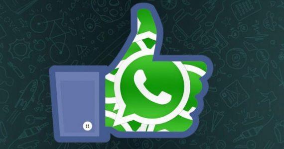 11995634_10204578110524352_1234368770_n